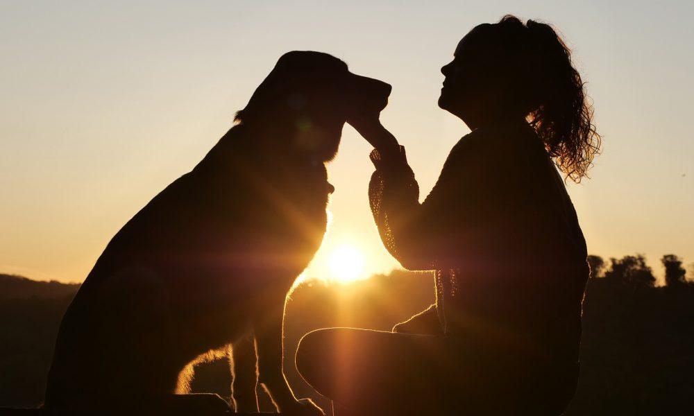 Sonnenuntergang mit Mensch und Hund